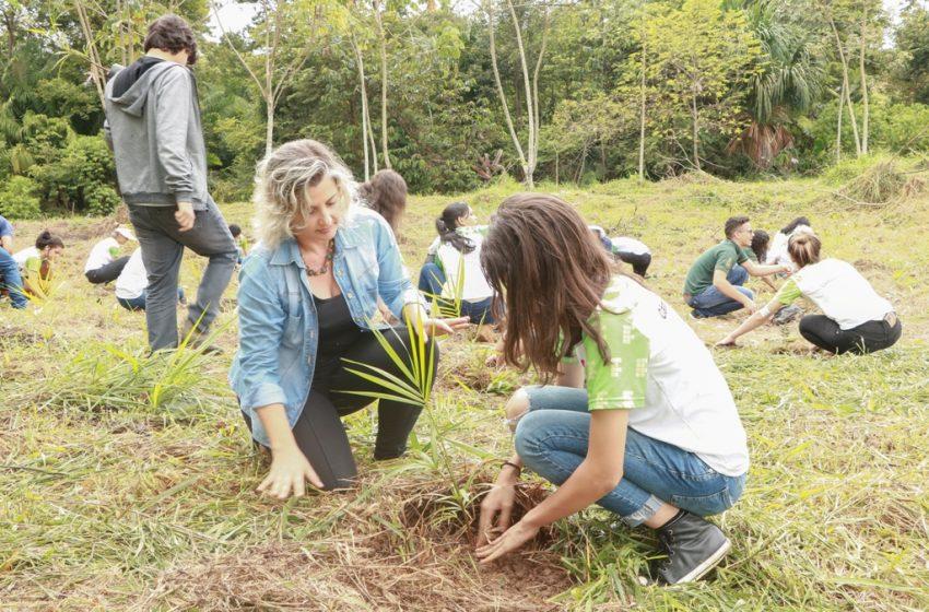 Em comemoração ao dia da água, mudas são plantadas por estudantes em Ji-Paraná, RO